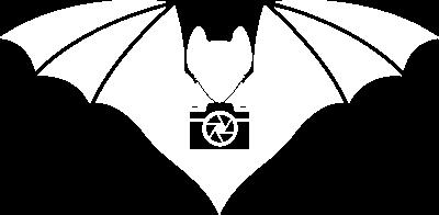 Austin City Photo Booth Bat Logo